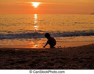 spiaggia, tramonto, capretto