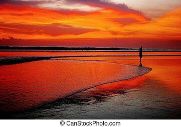 spiaggia tramonto, solo, uomo