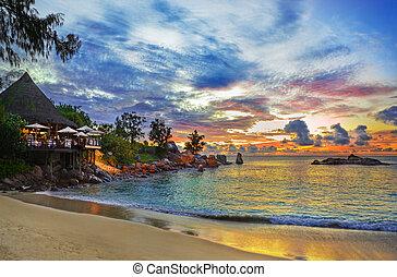 spiaggia tropicale, caffè, tramonto