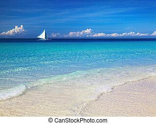 spiaggia tropicale, filippine