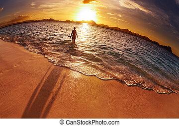 spiaggia tropicale, filippine, colpo fisheye
