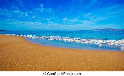 spiaggia tropicale, hawai