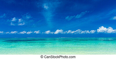 spiaggia tropicale, in, maldive