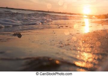 spiaggia tropicale, priorità bassa vaga, foto