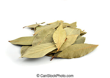 Spice - Bay Leaves - Close up of Bay Leaves on an isolated...