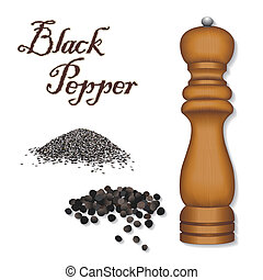 Whole black peppercorns, ground black pepper, dark wood pepper mill grinder. A universal spice for cooking and classic ingredient of French herb blend, Bouquet Garni. See other herbs and spices in this series. EPS8 includes gradient mesh.