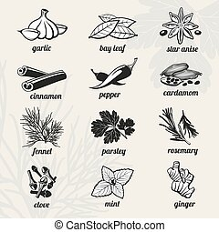 Spice vector icons set - Spice icons set. Cooking, fresh...