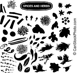 Spices and herbs black silhouette on a white background, a large set