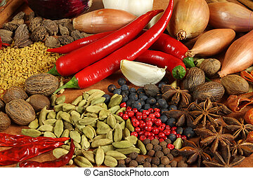 Herbs and spices selection. Aromatic ingredients and natural food additives. Cuisine elements.