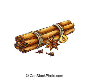 Spices: cinnamon, anise, cloves. Watercolor illustration on ...