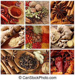 Spices collage close up