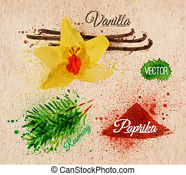 Spices herbs watercolor vanilla, rosemary, paprika kraft -...
