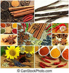 Spices in collage