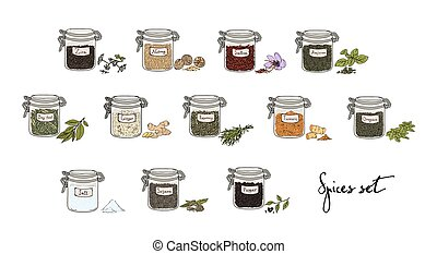 spices in jars, big set, part 1. collection hand drawn vector illustration.