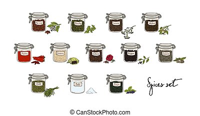 spices in jars, big set, part 2. collection hand drawn vector illustration.