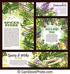 Spices store sketch posters of herbs