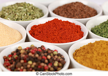 Various exotic spices in white bowls. Selective focus on the paprika powder.