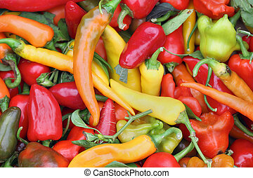 Spicy peppers - Big pile of colorful hot spicy peppers