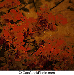 Spicy red bougainvillea background