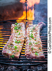 Spicy ribs on grill with thyme and spices