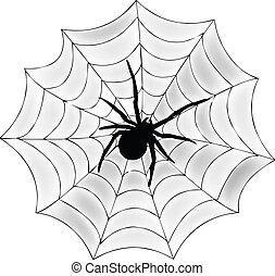 Spider and Web Vector Graphic