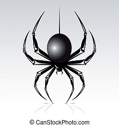 Spider - Black spider on a white background. Isolated.