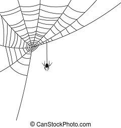 Spider hanging down from spiderweb. - Black spider hanging ...