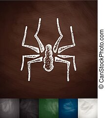 spider icon. Hand drawn vector illustration