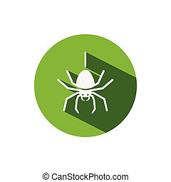Spider. Icon on a green circle. Animal vector illustration