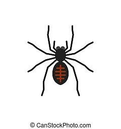 Spider insect tarantula single flat vector icon