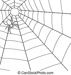 Spider on cobweb - Illustration of the spider on cobweb