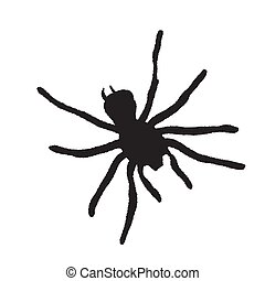 Spider silhouette on a white background. Vector Illustration