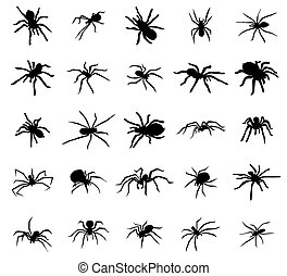 Spider silhouettes set isolated on white background