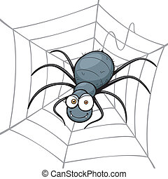 Spider - Vector illustration of Spider in a Web