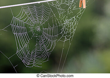 A photo of a spider web with morning dew on the pattern