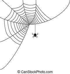 Spider web - A spiders web with a black spider on it