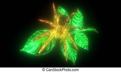spider web in a rainforest digital neon video - spider web ...