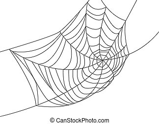 Spider web isolated on white for Halloween design