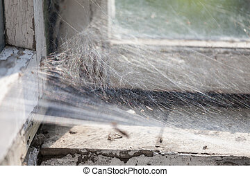 Spider web on a dirty window.