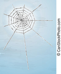 spider web with shadow