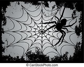 spider with spider web