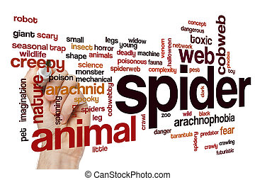 Spider word cloud concept