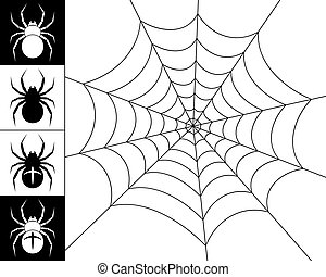 Spiders and web - Cobweb spider on a white background. ...