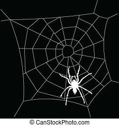 spiderweb white illustration