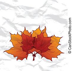 spiegazzato, autunnale, struttura, foglie, carta, acero