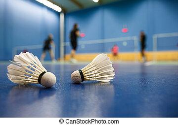 spieler, badminton, -, gerichte, konkurrieren