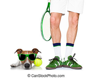 spieler, tennis, hund, kugel