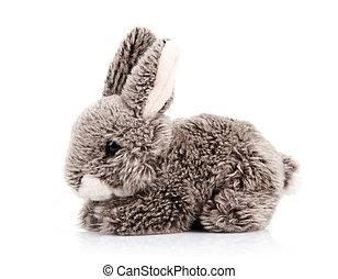 spielzeug, kaninchen