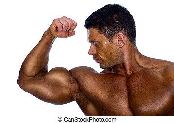 spierballen, het tonen, zijn, bodybuilder
