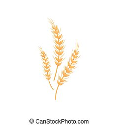 spikelets., bread., 小麦粉, 3, イラスト, バックグラウンド。, ベクトル, デザイン, 白, 生産